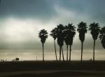 Venice Beach, Los Angeles - Etats-Unis