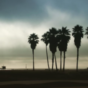 Venice Beach, Los Angeles - Etats-Unis